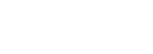 Expanded Animation Logo 2020